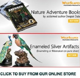 Wildscapes.net - The product store of Indianwildlifeclub.com offering video CDs, books, calendars, and silver bird artifacts.